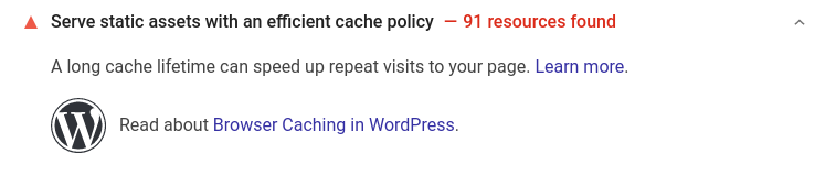 A screenshot of a Pagespeed Insighs analysis of a small business website, with the message 'serve static assets with an efficient cache policy'