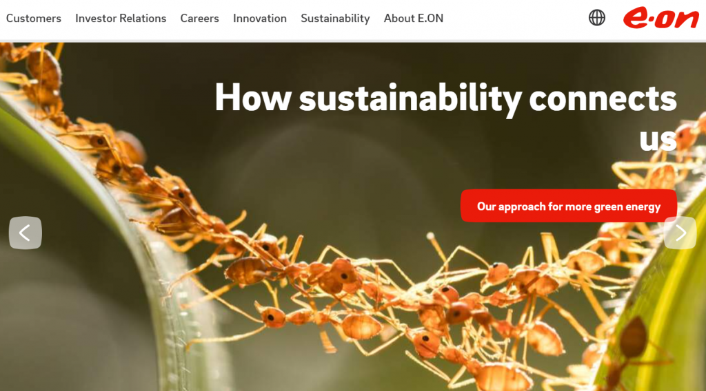 a screenshot of Eon's homepage, depicting a photo of a colony of ants and the words 'How sustainability connects us' in white